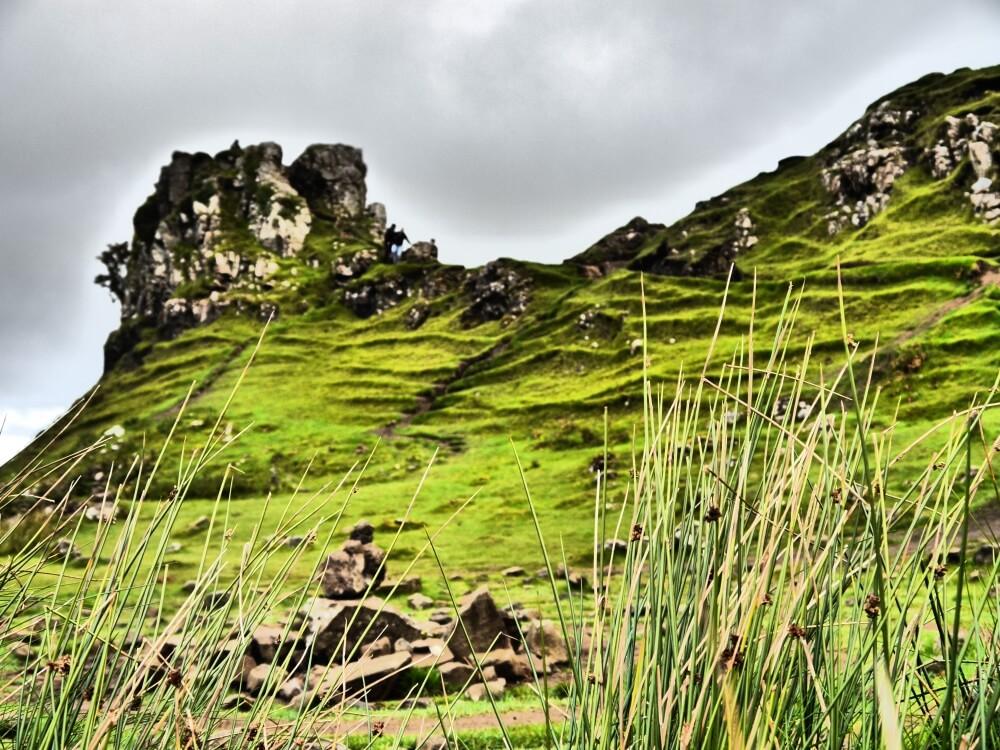 Castle Ewen hinter Gräsern